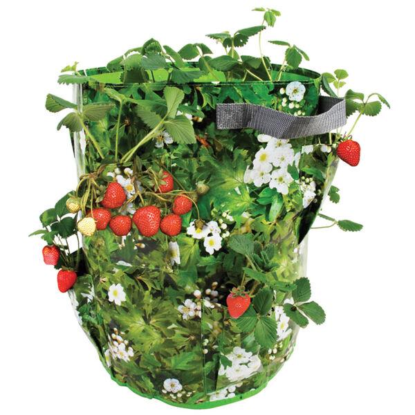 Eper és gyógynövény termesztő zsák
